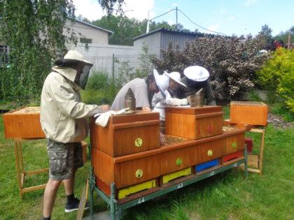 Odborný výcvik - prohlídky včelstev